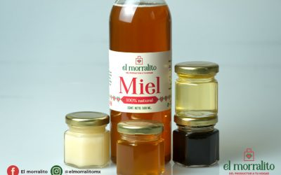 ¿Sabes cómo debes almacenar la miel en tu casa?