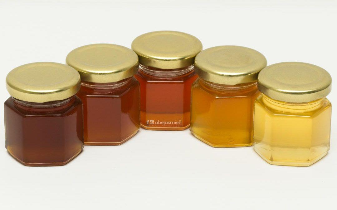 ¿Por qué es diferente la miel de melipona?